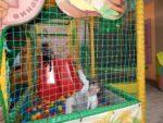 Детская комната «Поиграйка»